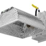Best CMH Grow Lights for 2020