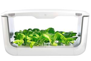 VegeBox Large Hydroponics Growing System with LED Garden Light, Indoor Herb Garden, Automatic Garden Kit