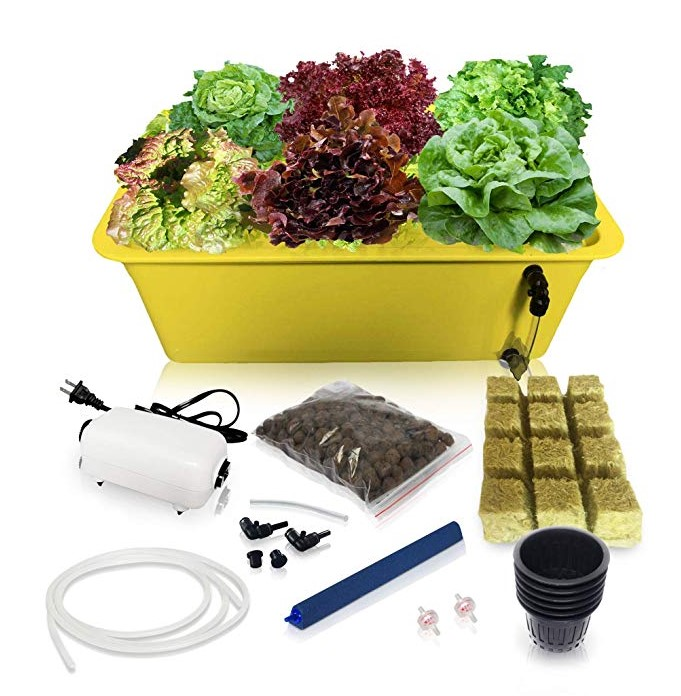 Deep Water Culture Hydroponic Growing Kit