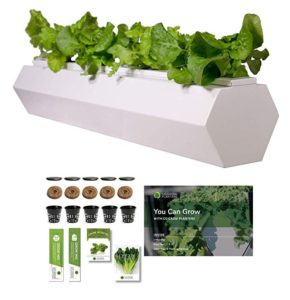 Go Grow Hydroponic Gardening Planter