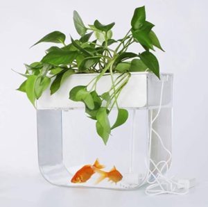 JoyFay Aquaponic Fish Tank