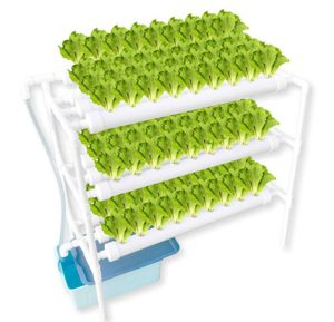 WePlant Hydroponic Growing Systems